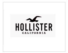 הוליסטר-HOLLISTER